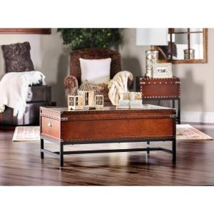 furniture-of-storage-chest-trunk-coffee-table